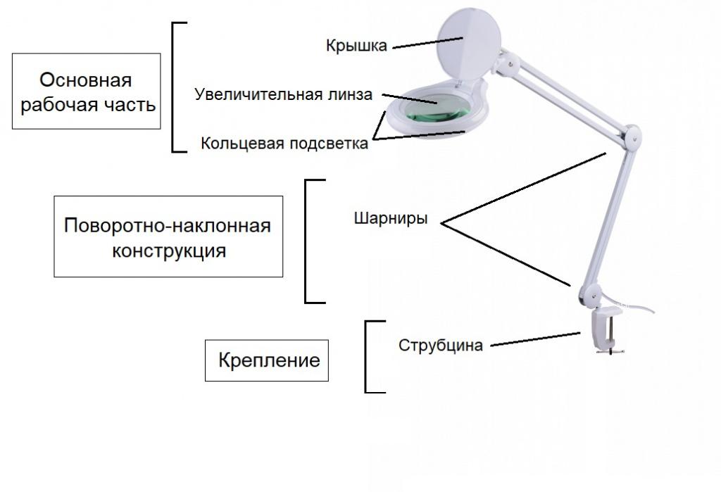Строение лампы лупы.jpg